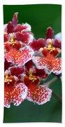 Orchid 31 Bath Towel