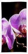 Orchid At Fairchild Gardens Bath Towel