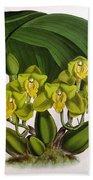 Orchid, Bifrenaria Aurantiaca, 1891 Bath Towel