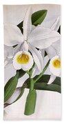 Orchid, C. Eldorado Virginalis, 1891 Bath Towel