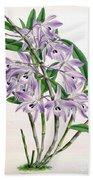 Orchid, Dendrobium Transparens, 1891 Bath Towel