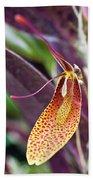 Orchid Flower - Restrepia Radulifera Bath Towel