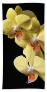 Orchid Set Against Black. Bath Towel