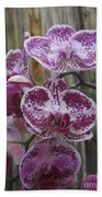 Orchid With Purple Patches Bath Towel