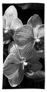 Orchids In Black And White Bath Towel