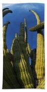 Organ Pipe Cactus Arizona Bath Towel