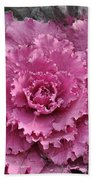 Ornamental Cabbage Bath Towel