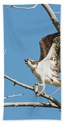 Osprey And Black Billed Magpie Bath Towel