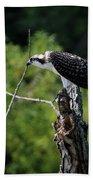 Osprey Gaze II Bath Towel