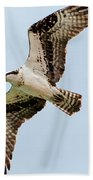 Osprey Hovering Bath Towel