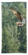 Osprey In Flight 6 Bath Towel