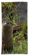 Otters Bath Towel