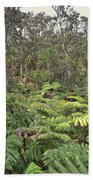 Overlooking The Rainforest Bath Towel
