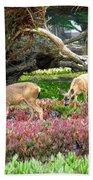 Pacific Grove Deer Feeding Bath Towel