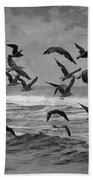 Pacific Gulls Bath Towel