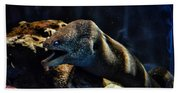 Pacific Moray Eel Bath Towel