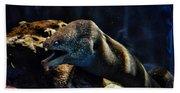 Pacific Moray Eel Bath Towel