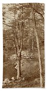 Painted Shore Camps In Sepia Bath Towel