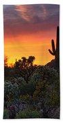 Painted Skies Of The Sonoran Desert Bath Towel