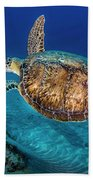 Painted Turtle Bath Towel
