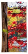 Painterly Rendition Of Red Leaves And Tree Trunk In Autumn Bath Towel