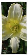 Pale Yellow Flowering Lily Blossom In A Garden Bath Towel