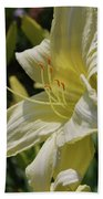 Pale Yellow Lily In A Garden Of Daylilies Bath Towel