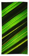 Palm Frond Abstract Bath Towel