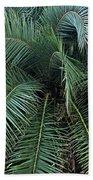 Palm Fronds Bath Towel