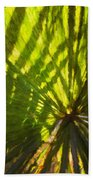 Palm Leaves And Morning Light Bath Towel