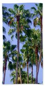 Palm Trees. California, Sunny Beauty Bath Towel