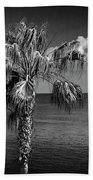 Palm Trees In Black And White At Laguna Beach Bath Towel