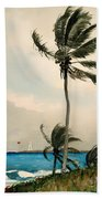 Palm Trees - Nassau Bath Towel