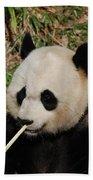 Panda Bear Eating Bamboo Shoots Up Close And Personal Bath Towel