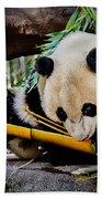 Panda Bear Bath Towel
