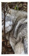Panoramic Gray Wolf Yukon Bath Towel