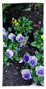 Pansies Bath Towel