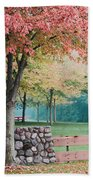 Park In Autumn/fall Colors Bath Towel