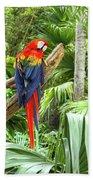 Parrot In Tropical Setting Bath Towel