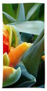 Parrot Tulip Bath Towel
