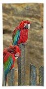 Parrots, Doue-la-fontaine Zoo, Loire, France Bath Towel