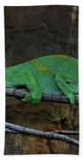 Parson's Chameleon Bath Towel
