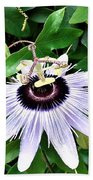 Passion Flower Hand Towel