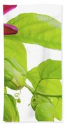 Passion Flower Ver. 9 Bath Towel