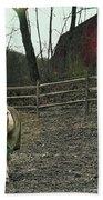 Pasture Pony Bath Sheet