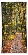 Path In Fall Forest Bath Towel