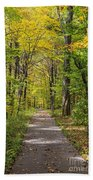 Path In The Woods During Fall Leaf Season Bath Towel