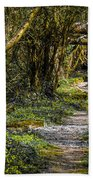 Path Through Yeats' Fairy Forest Hand Towel by James Truett