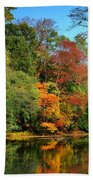 Peaceful Calm - Allaire State Park Hand Towel