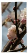 Peach Blossoms In Spring Bath Towel